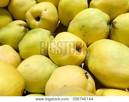 Yellow Fresh Quinces Fruits For Sale In A Market As A Background, Organic Wholevfood In Supermarket