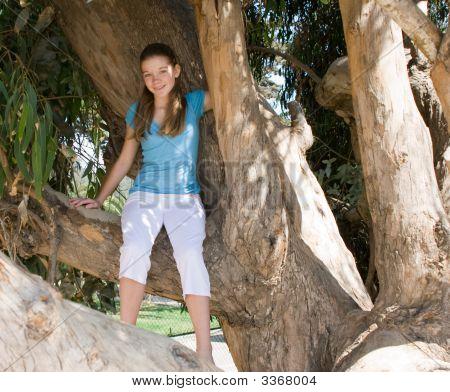 Teen Girl Sitting In A Tree