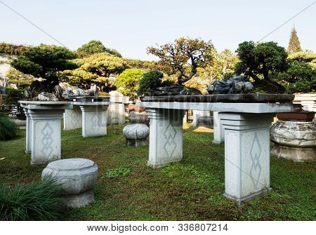 Suzhou, China - October 30, 2017: Bonsai Installation At Lingering Garden, One Of The Most Famous Cl