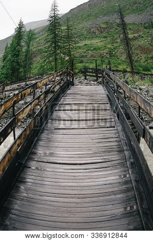 Bridge Of Logs And Sleepers. Wooden Flooring For Transportation. Ecological Road Without Asphalt