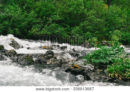 River With Fast Flowing Water, Mountain Stream Rocks. Travel To The Mountain Valley, Water Tourism