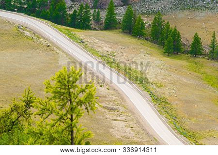Asphalt Road Through Hills And Forest. Road Trip In Nature In Mountains