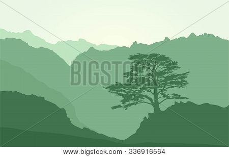 Mountains Landscape With Rocks And Lebanese Cedar Tree. Green Flat Background Landscape