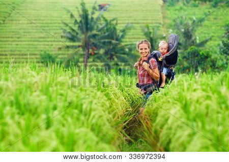 Nature Walk In Green Rice Terrace Field. Happy Mother Hold Little Traveller In Carrying Backpack. Ba