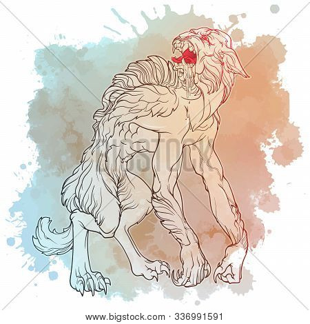 Werewolf. A Legendary Monster From European Folklore Tales. Line Drawing On A Grunge Watercolor Text