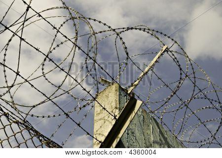 Nato Razor Wire