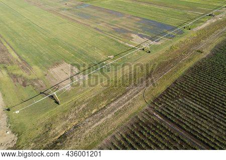 A Sugarcane Paddock Beside A Field Of Lawn Being Grown And A Long Line Irrigation System - Aerial La