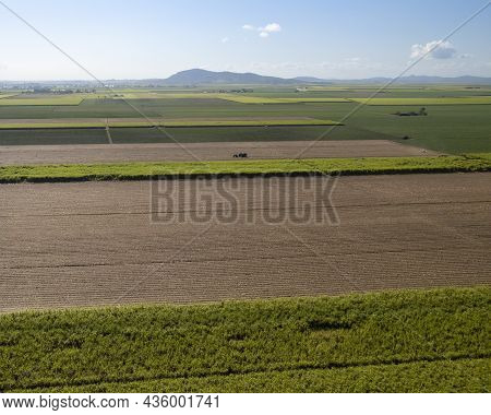 A Farmer With Tractor Carting Harvested Sugarcane To The Rail Siding To Go To The Mill, Aerial Of A