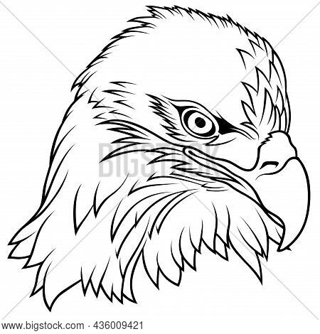 Bald Eagle Head - Black Outlined Illustration Isolated On White Background, Vector