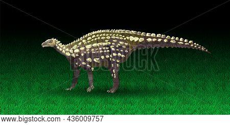 Vector Scelidosaurus. Ornithischian Dinosaur. Monochrome Vector Illustration Of Silhouette Of Prehis
