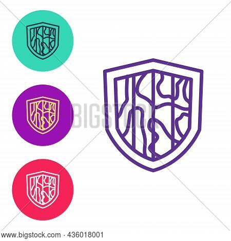 Set Line Shield Icon Isolated On White Background. Guard Sign. Security, Safety, Protection, Privacy