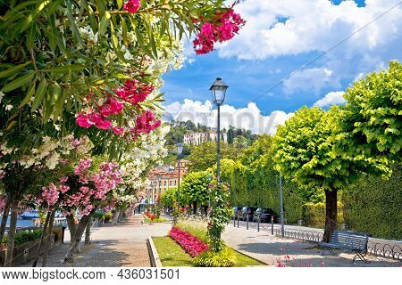 Lungolago Europa Famous Flower Lakefront Walkway In Belaggio, Town On Como Lake, Lombardy Region Of