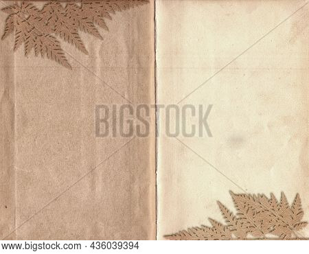 Old Vintage Rough Paper With Plant Relief Texture