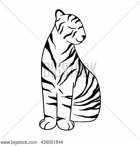 Doodle Tiger Sitting, Hand-drawn. Cute Chinese Tiger Drawn With Black Lines. Vector Illustration Iso