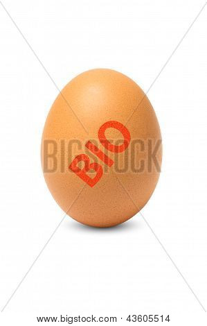 Egg with BIO stamp isolated On A White Background