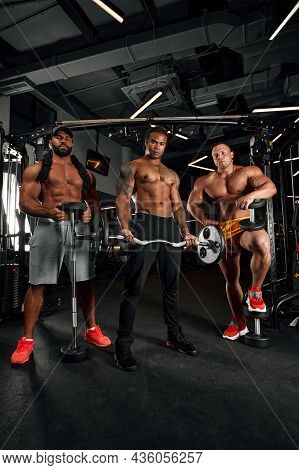 Brutal Sexy Strong Bodybuilders Athletic Fitness Men Pumping Up Abs Muscles Workout Bodybuilding Con