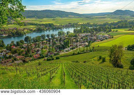Panoramic Terraced Vineyards Of Stein Am Rhein Cityscape. Stein Am Rhein Fortified City In Gothic Ar