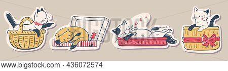 Illustration Of Funny Cartoon Kittens. Hand-drawn Illustration.  Vector Set.