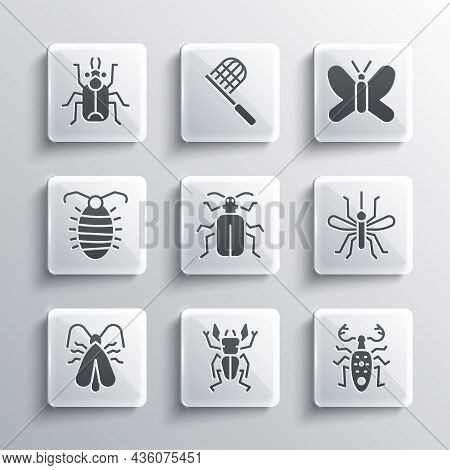 Set Beetle Deer, Mosquito, Chafer Beetle, Clothes Moth, Larva Insect, Bug And Butterfly Icon. Vector