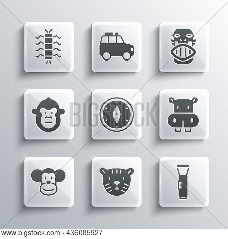 Set Tiger Head, Flashlight, Hippo Or Hippopotamus, Compass, Monkey, Centipede Insect And Mexican May