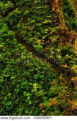 Trail Through Steep Cliff With Rainforest In The Peruvian Andes. The Highest Region With The Largest