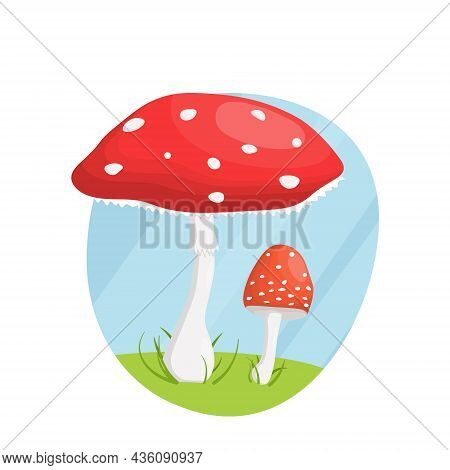 Flat Illustration, Red Spotted Fly Agaric In Grass, On A Hill.