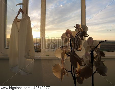 Minimalistic Style Of Home Comfort With A White Orchid And A Blouse Against The Background Of A Wind