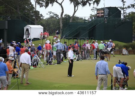 Putting green  at The Players Championship 2012