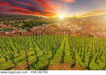 Scenic Sunset On Schaffhausen With Vineyard Terraces By The Upper Rhine River. Aerial Cityscape And