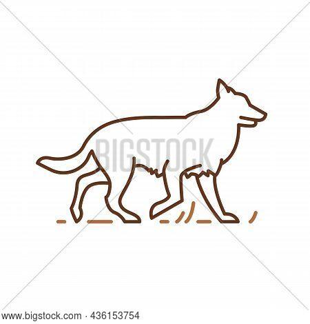 Border Collie Dog Icons Design, Pets Symbol, Vector Contour Illustration. Pedigree Friendly Pet Herd