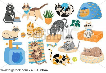 Cartoon Cats Playing With Toys, Relaxing And Sleeping In Bed. Hapy Pet Kitten Characters In Funny Po