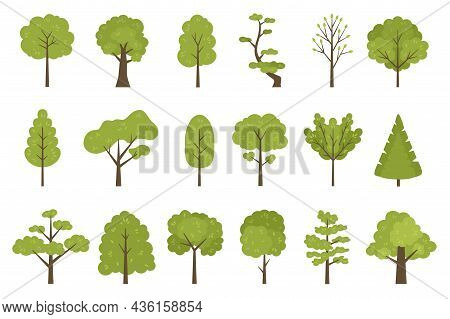 Flat Forest Trees Icons, Garden Or Park Landscape Elements. Cartoon Simple Summer Tree Trunk, Leaves