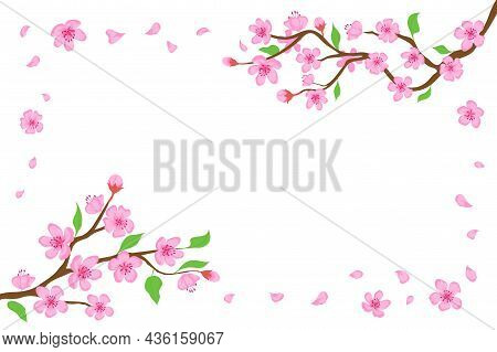 Cartoon Japanese Cherry Blossom And Falling Petals Background. Sakura Branches With Pink Flowers Ban