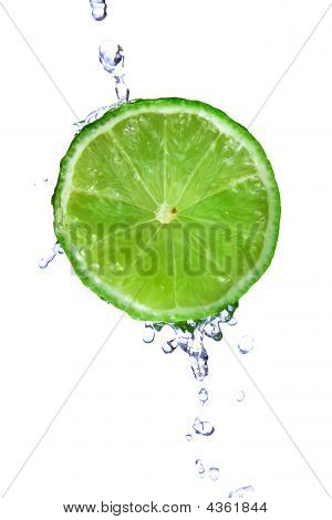 Fresh Lime With Water Drops  Isolated On White