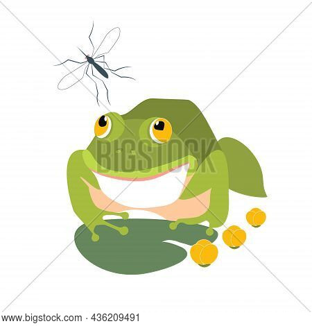A Hungry Frog Is Going To Eat The Mosquito. Flat Vector Illustration