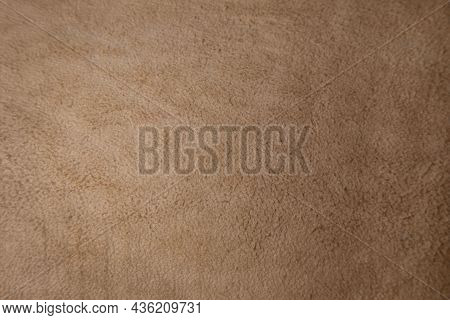 A Fragment Of Tanned Leather On The Inside (scrapings), Close-up.