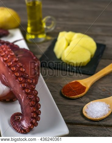 Galician Octopus Typical Spanish Food