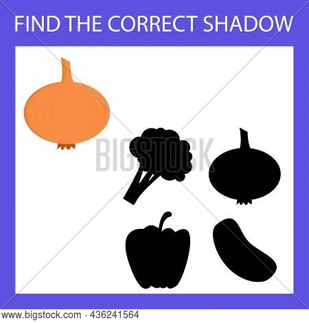 Find A Shadow Onion Steam Room. Match Vegetable With Correct Shadow Preschool Worksheet, Kids Activi