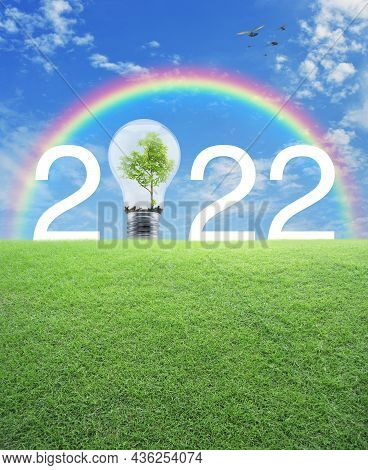 2022 White Text And Light Bulb With Tree Inside On Green Grass Field Over Rainbow, Birds And Blue Sk