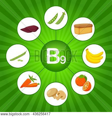 Square Poster With Food Products Containing Vitamin B9. Folic Acid. Medicine, Diet, Healthy Eating,