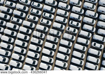 Aerial View From Drone To Automobile Customs Terminal. Large Number Whites Of Cars At Customs Termin