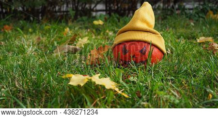 Pumpkin Jack O Lenten In A Yellow Hat On A Lawn Among Yellow Maple Leaves. Waiting For Halloween