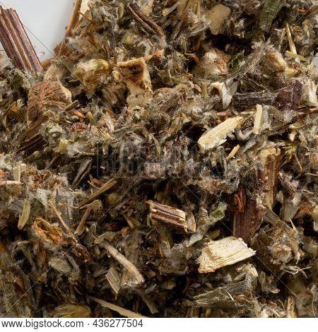 Detailed And Large Close Up Shot Of Mugwort Spice.