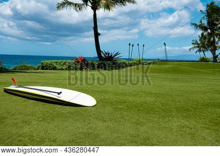 Beautiful Beach In Aloha Hawaii. Tropical Beach With Palms. Holiday And Vacation Concept. Tropical B