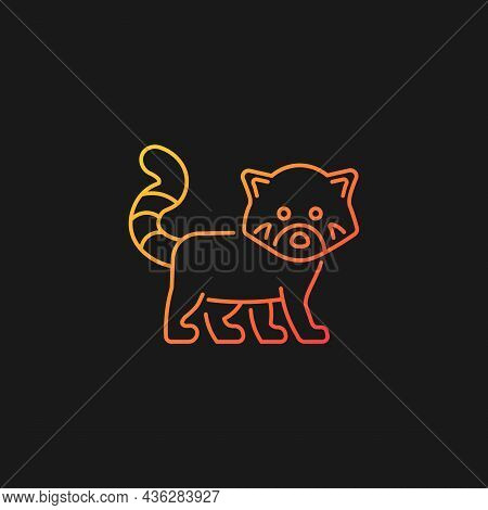 Red Panda Gradient Vector Icon For Dark Theme. Wildlife Protection In Nepal. Endangered Species. Les