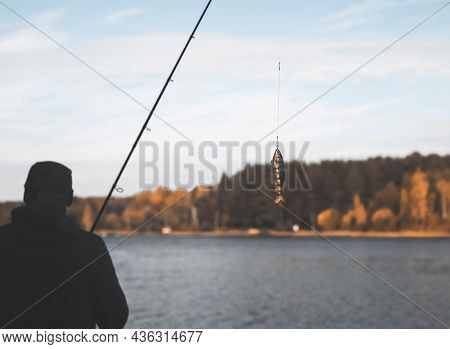 Swim Bait Or Wobbler Hanging On Fishing Rod For Predator Fish And Pike.