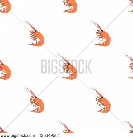 Shrimp Pattern Seamless Background Texture Repeat Wallpaper Geometric Vector