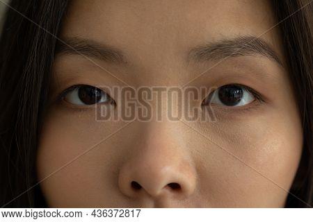Beautiful Brown Eyes And Eyebrows Of An Asian Close-up Look At The Camera