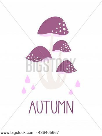 Mushroom Isolated On White Background, Cute Fairy Mushrooms, Template Vector Autumn Illustration For