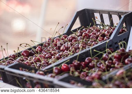 Sweet Cherries, Fresh And Red, For Sale On A Market In Belgrade, Serbia Piled On A Stall In A Pijaca